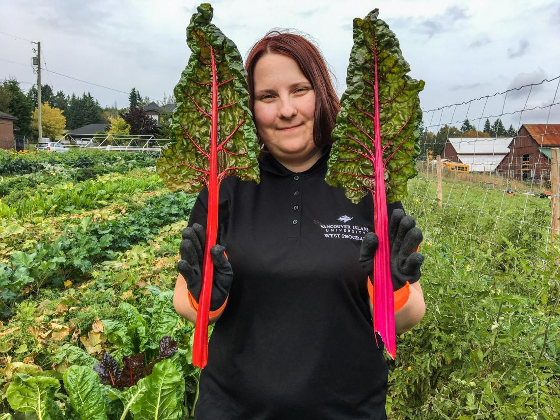 Planting Vegetable Seeds for a Growing Need