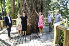 Five people stand around a tree at Milner Gardens & Woodland.