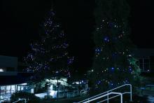 VIU_Christmas