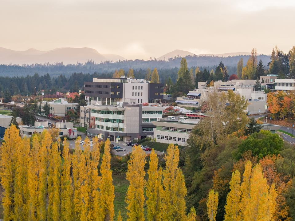 An aerial view of buildings at the VIU Nanaimo campus with a cropping of trees in the foreground.